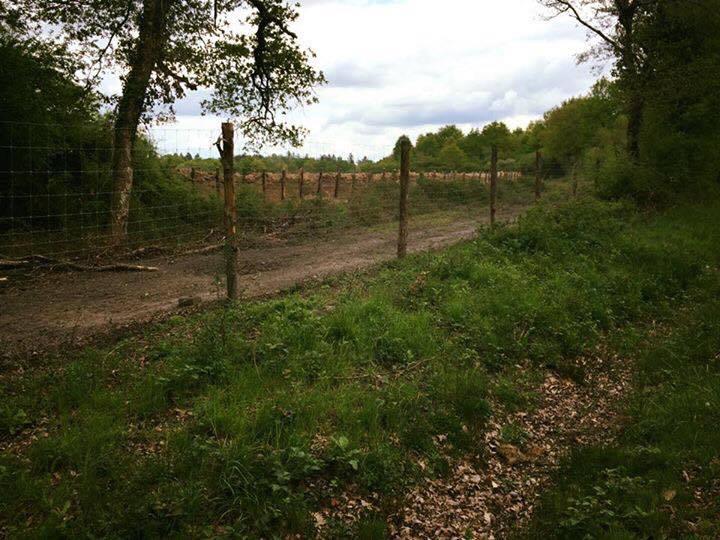 clôture + mur en doublage