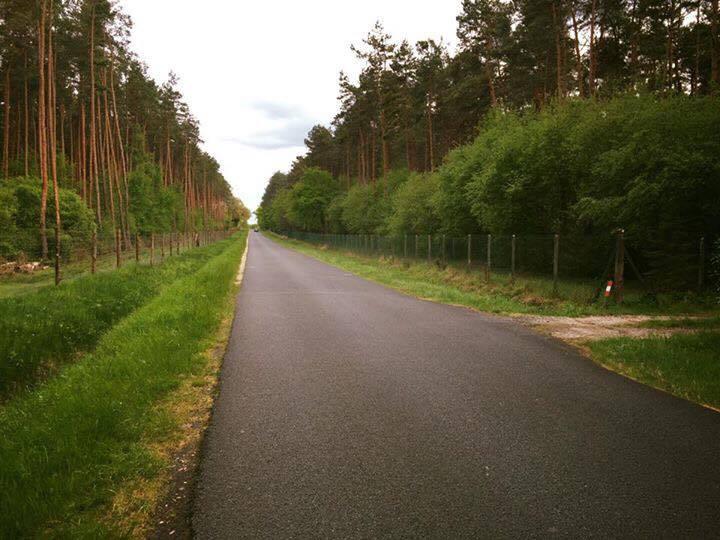 clôture de chaque coté de la route