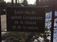 Parc Saint Hubert en Wallonie